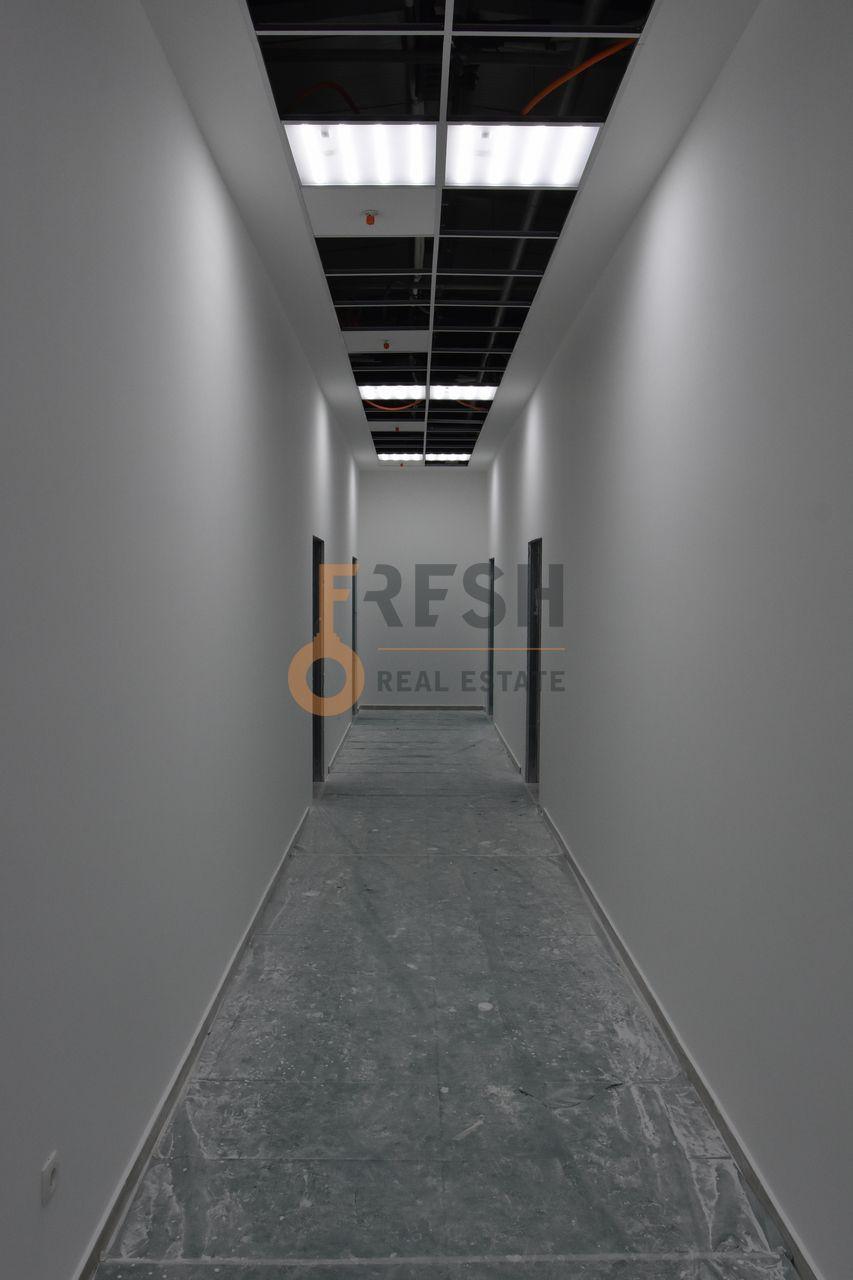 Poslovni prostor, 1000m2, Kotor, Radanovići, Izdavanje - 13