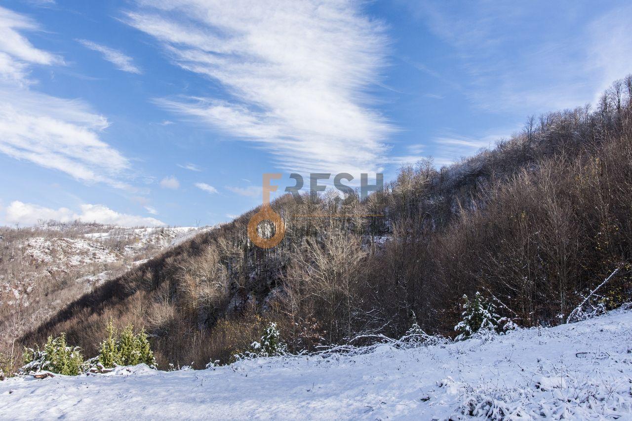 Plac 252532m2, Kolašin, Prodaja - 19