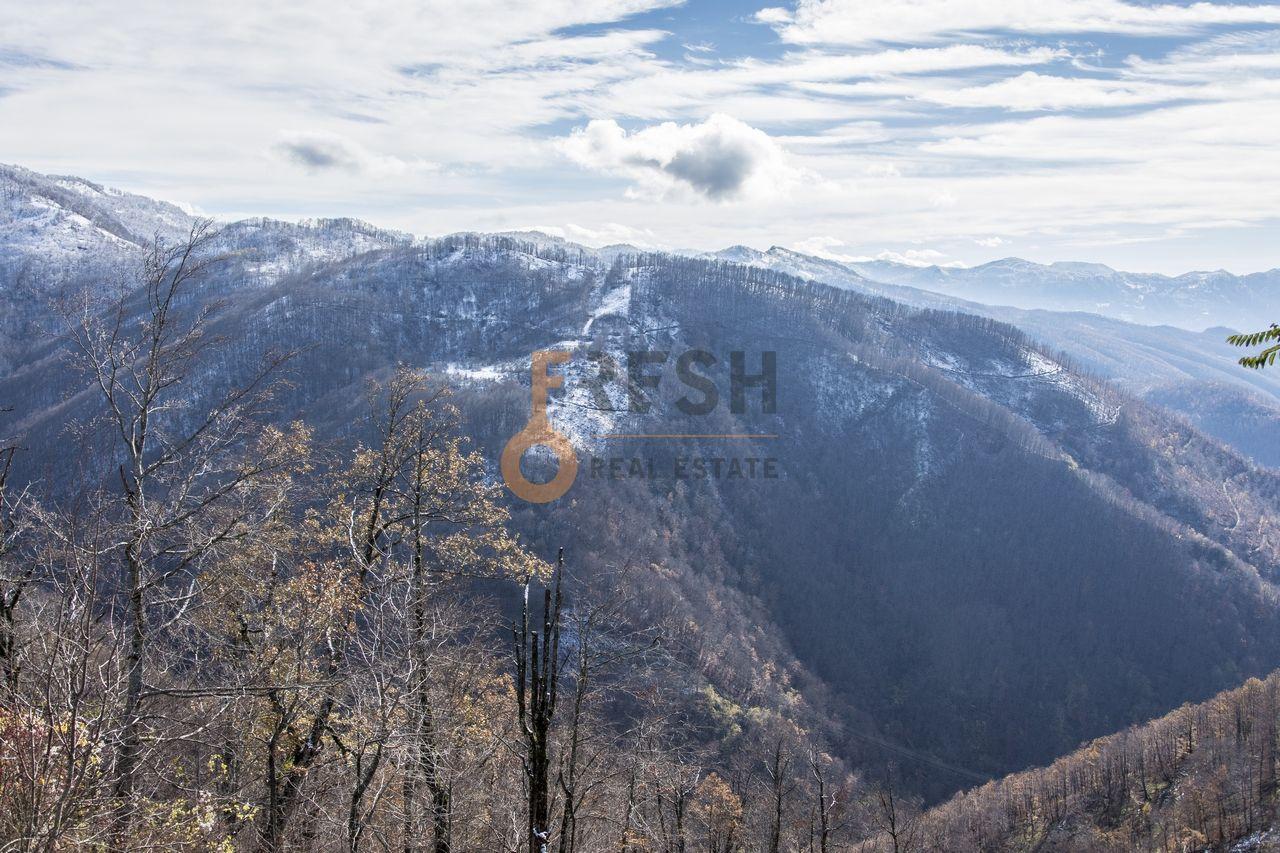 Plac 252532m2, Kolašin, Prodaja - 5