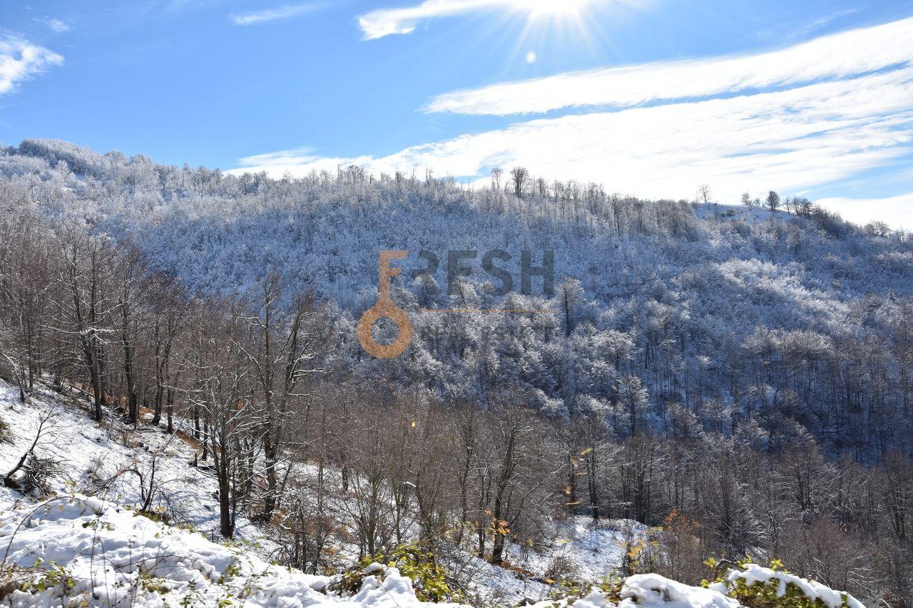 Plac 252532m2, Kolašin, Prodaja - 10