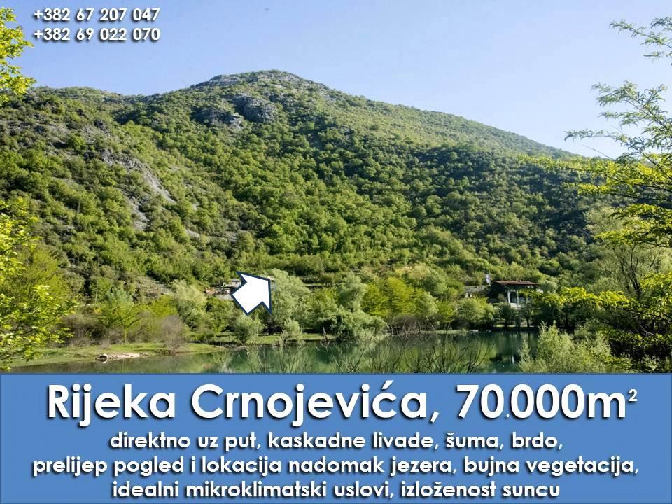 Imanje na Rijeci Crnojevića, 70.000m2, pored jezera, Prodaja - 1