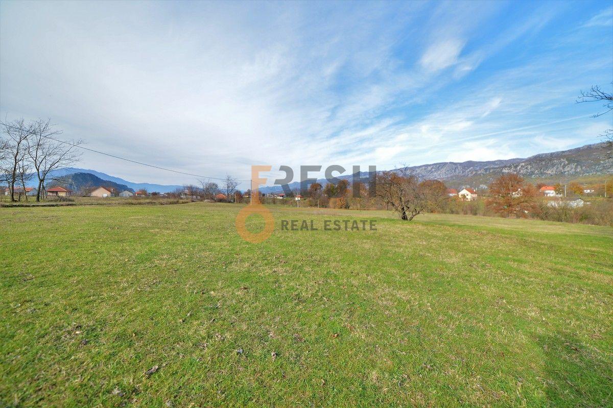 Plac, 9000m2, sa kućištem 87m2, Spuž, Prodaja - 1