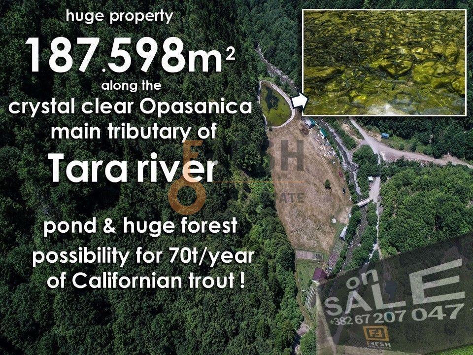 Vrhunsko imanje na obali rijeke, 187.598m2 - 1