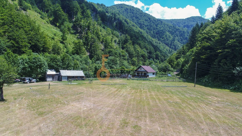 Vrhunsko imanje na obali rijeke, 187.598m2 - 8