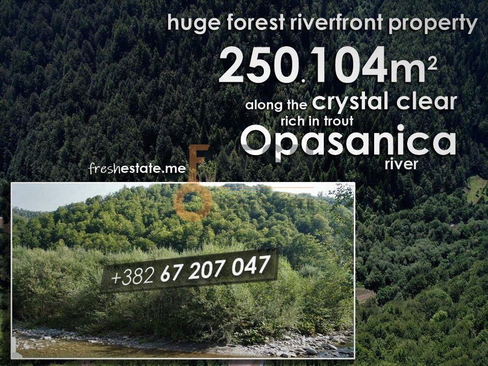 250.104m2 šumskog imanja Opasanica, Podgorica, Prodaja - 1