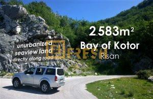 Plac 2583m2 pogled na more, Risan, Kotor - 1