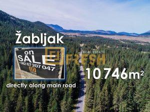 Zemljište, 10746m2 uz magistralu, Žabljak - 1