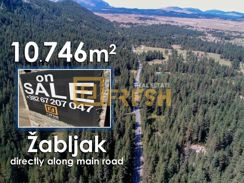 Zemljište, 10746m2 uz magistralu, Žabljak - 0