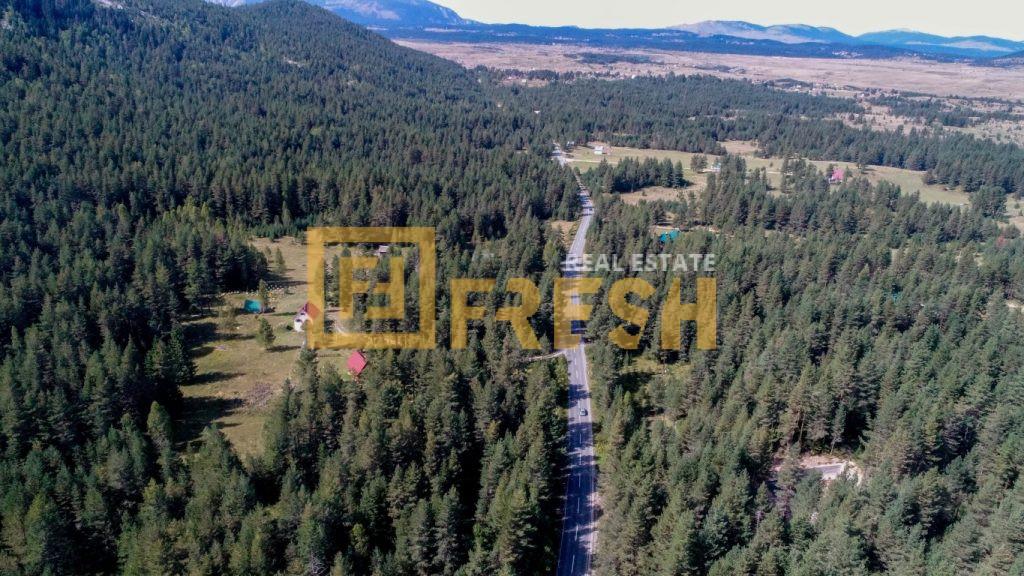 Zemljište, 10746m2 uz magistralu, Žabljak - 3