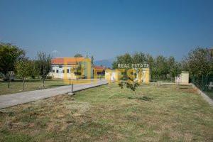 Kuća, 56m2, na placu 1200m2, Danilovgrad, Prodaja - 1