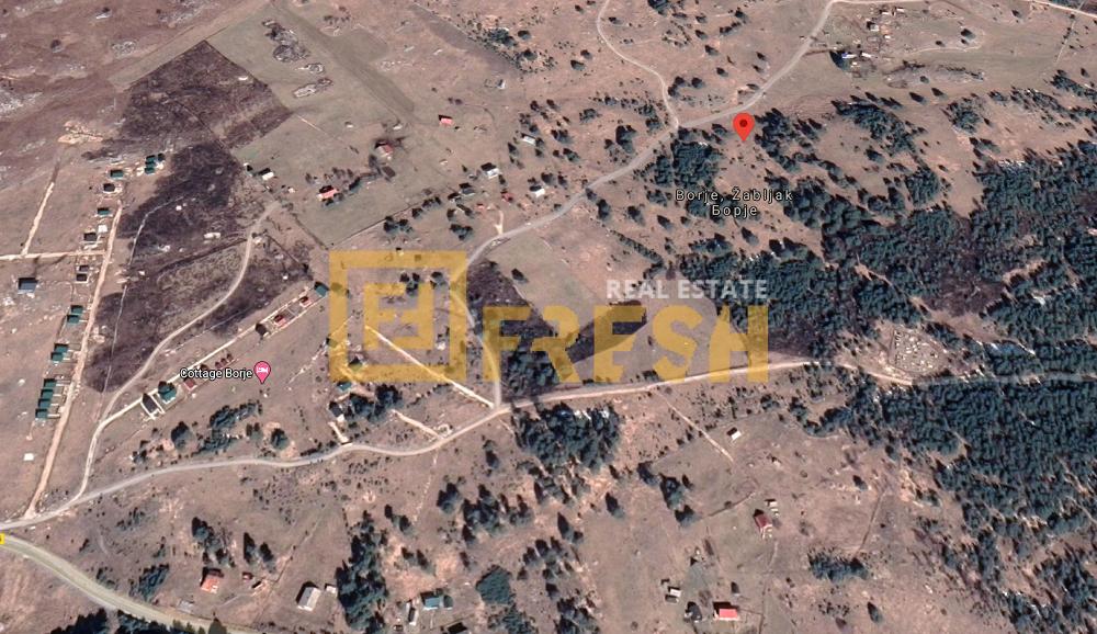 Plac, 21.000m2, Žabljak, Prodaja 1