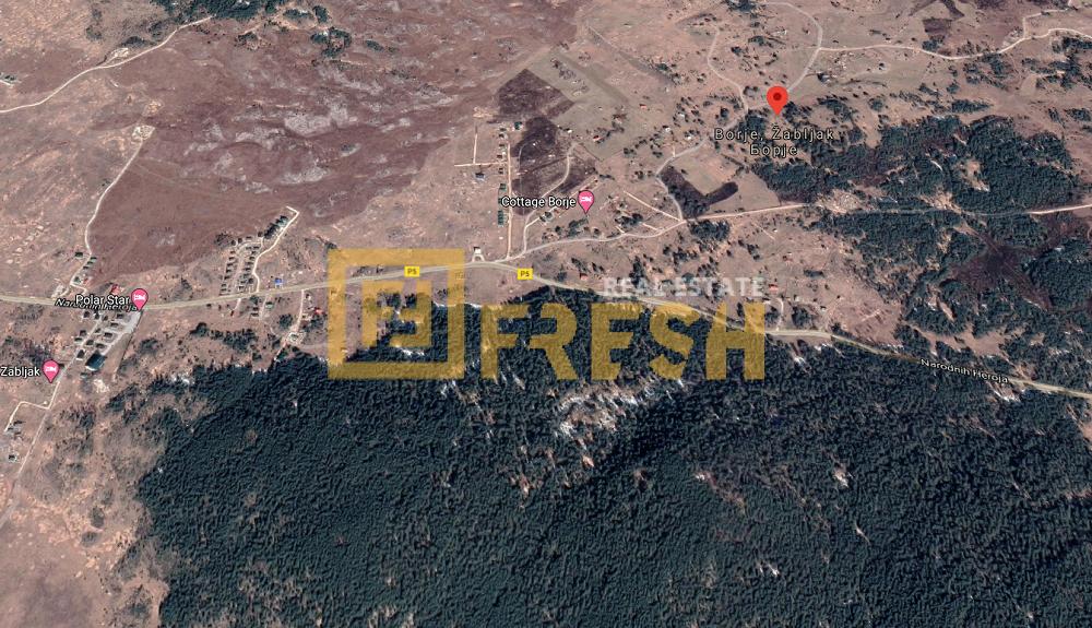 Plac, 21.000m2, Žabljak, Prodaja - 1