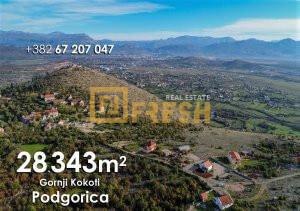 28343m2 Gornji Kokoti, Podgorica - 1