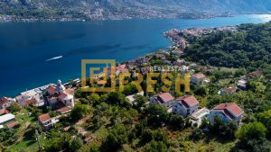 Jednosoban stan, 55m2, Kotor, Prodaja - 1